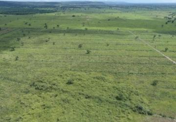 Fazendeiros são multados por desmatar 271 hectares