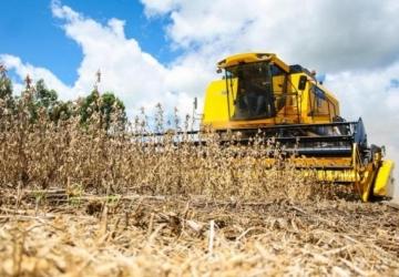 Com início de colheita e maior oferta, cotação de soja cai 3,4%