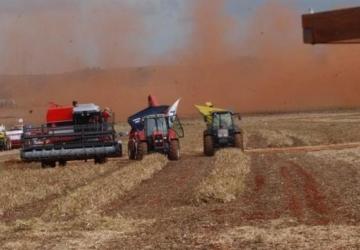 Safra recorde de grãos aumentará em volume e área plantada